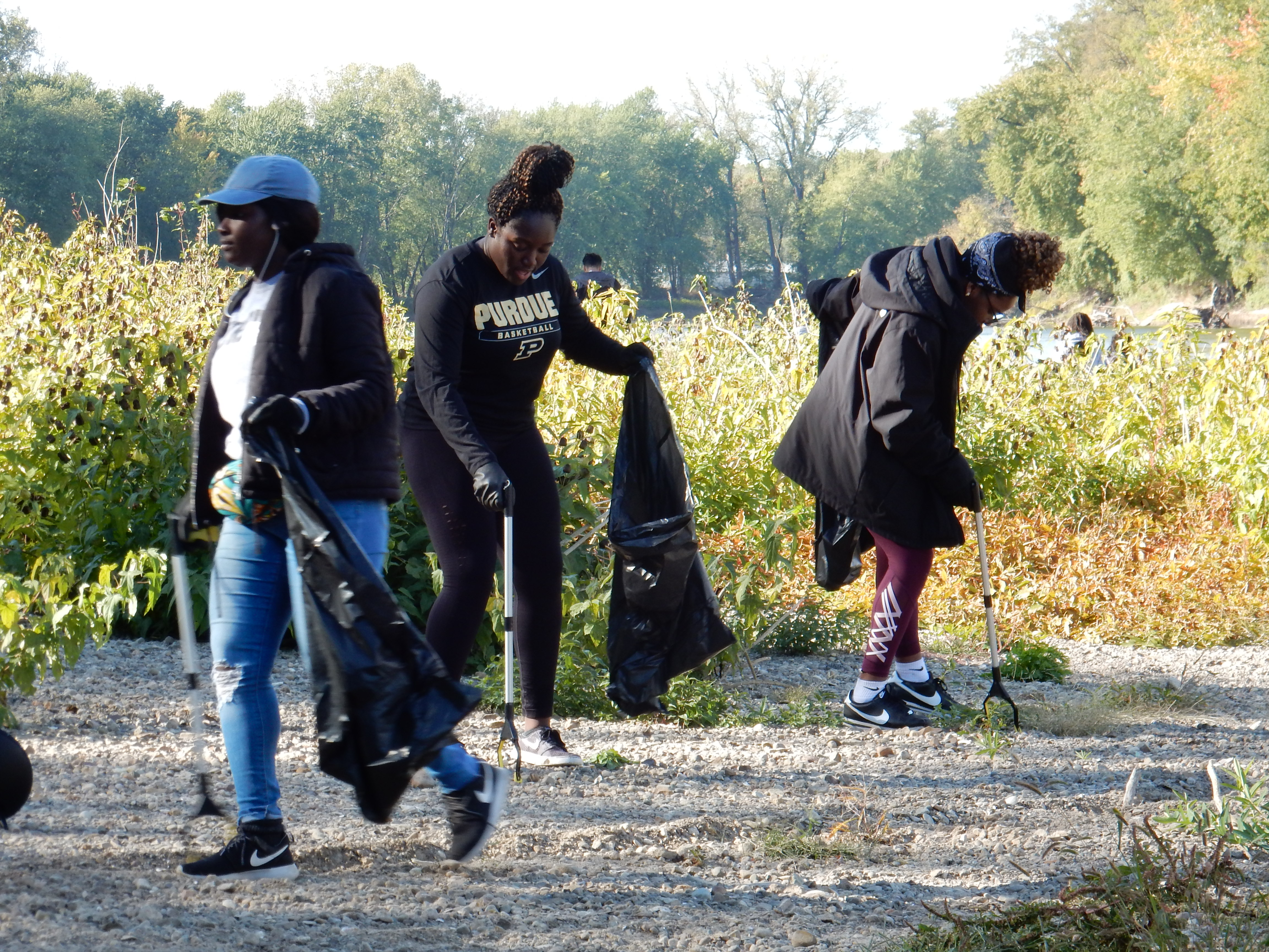 Volunteers work together to pick from Shamrock Island